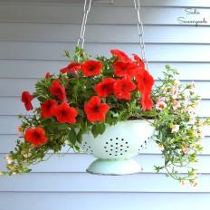 Hanging-Porch-Coalander-Planter