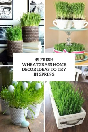 49-fresh-wheatgrass-home-decor-ideas-to-try-in-spring-cover