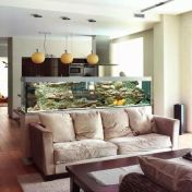 a-large-fish-tank-to-divide-the-living-room-and-the-kitchen-is-a-very-fresh-and-beautiful-option-to-go-for