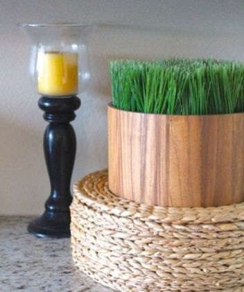 a-simple-and-modern-plywood-planter-with-wheatgrass-is-a-lovely-spring-decoration-to-rock