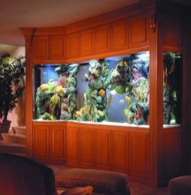 aquariums-in-interiors-10