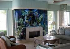 aquariums-in-interiors-4-554x388