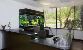 aquariums-in-interiors-54-554x336
