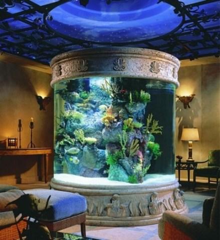 aquariums-in-interiors-8