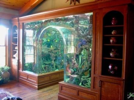 aquariums-in-interiors-9-554x415