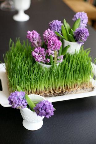 fresh-wheatgrass-decor-ideas-to-try-in-spring-5