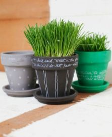 painted-and-chalkboard-pots-with-wheatgrass-are-lovely-and-cheerful-for-spring-make-some-yourself