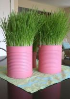 pink-tin-cans-with-wheatgrass-will-form-a-bold-and-cool-spring-centerpiece-or-decoration