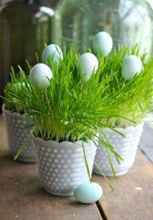 white-milk-planters-with-wheatgrass-and-some-fake-eggs-for-Easter-or-just-for-spring-are-a-cute-idea