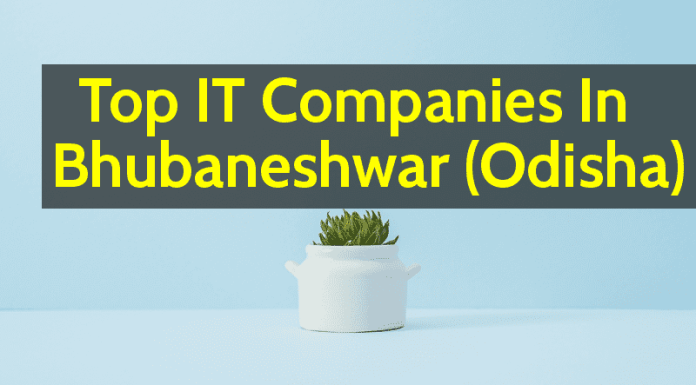 Top IT Companies In Bhubaneshwar (Odisha)