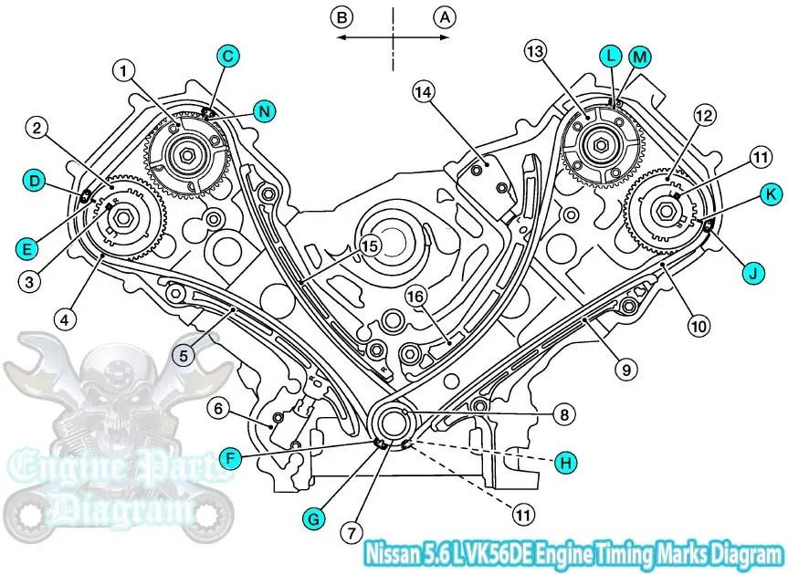 20042010 Infiniti QX56 56 L V8 VK56DE Engine Timing Marks