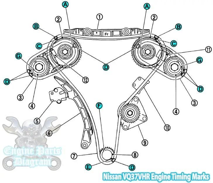 Infiniti FX QX70 Timing Marks Diagram (3.7L VQ Engine)Engine Parts Diagram