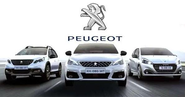 2017-2020 Peugeot 5008 Low Tyre Pressure Warning Light Reset