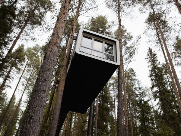 Treehotel Opens the World's Largest Treehouse in Northern Sweden