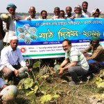 BARI arranges field day at Shaghata on hybrid sweet gourd