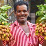 Juicy litchi starts appearing in Rajshahi markets