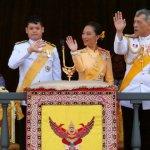 Marching band: Elephants celebrate Thailand's new King