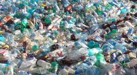 Coke, Pepsi, Nestle top producers of plastic waste globally: Greenpeace