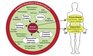 שימור מגוון ביולוגי - הפורום הישראלי לתזונה בת קיימא