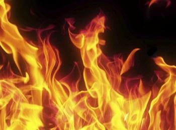 Fire guts teashop in refugee camp