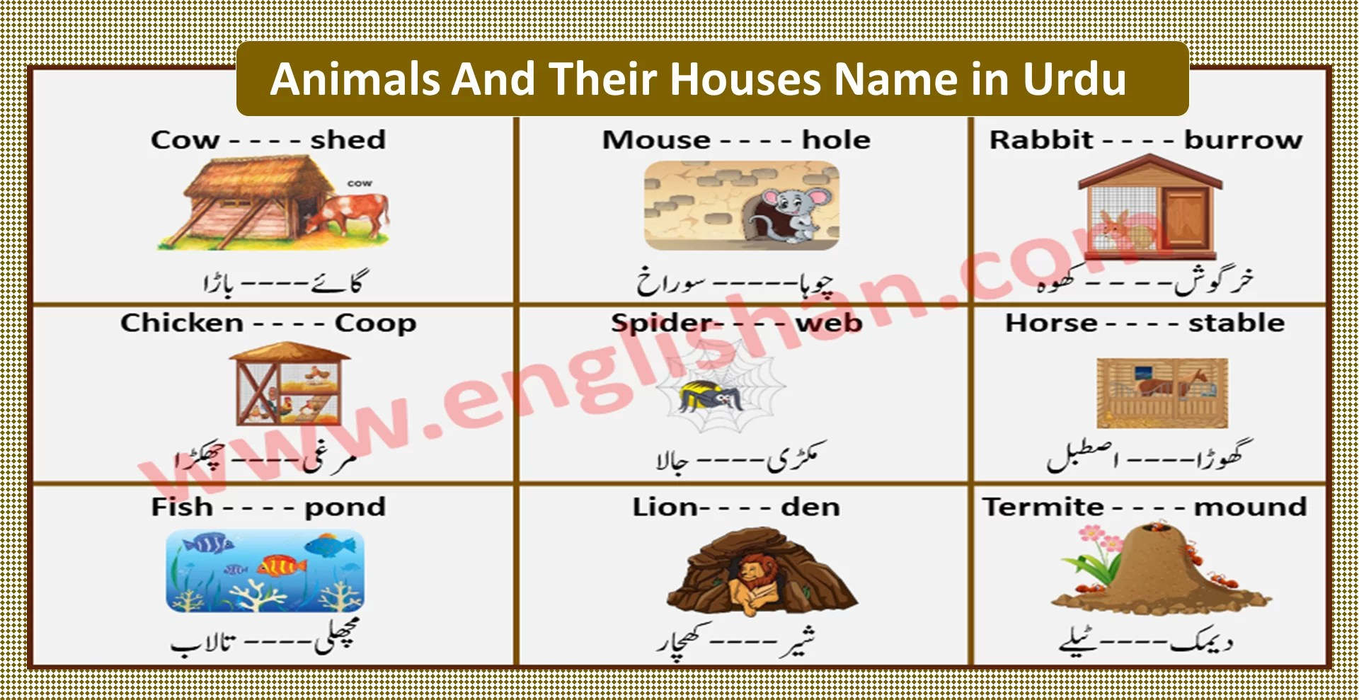 50 Animals And Their Homes Name
