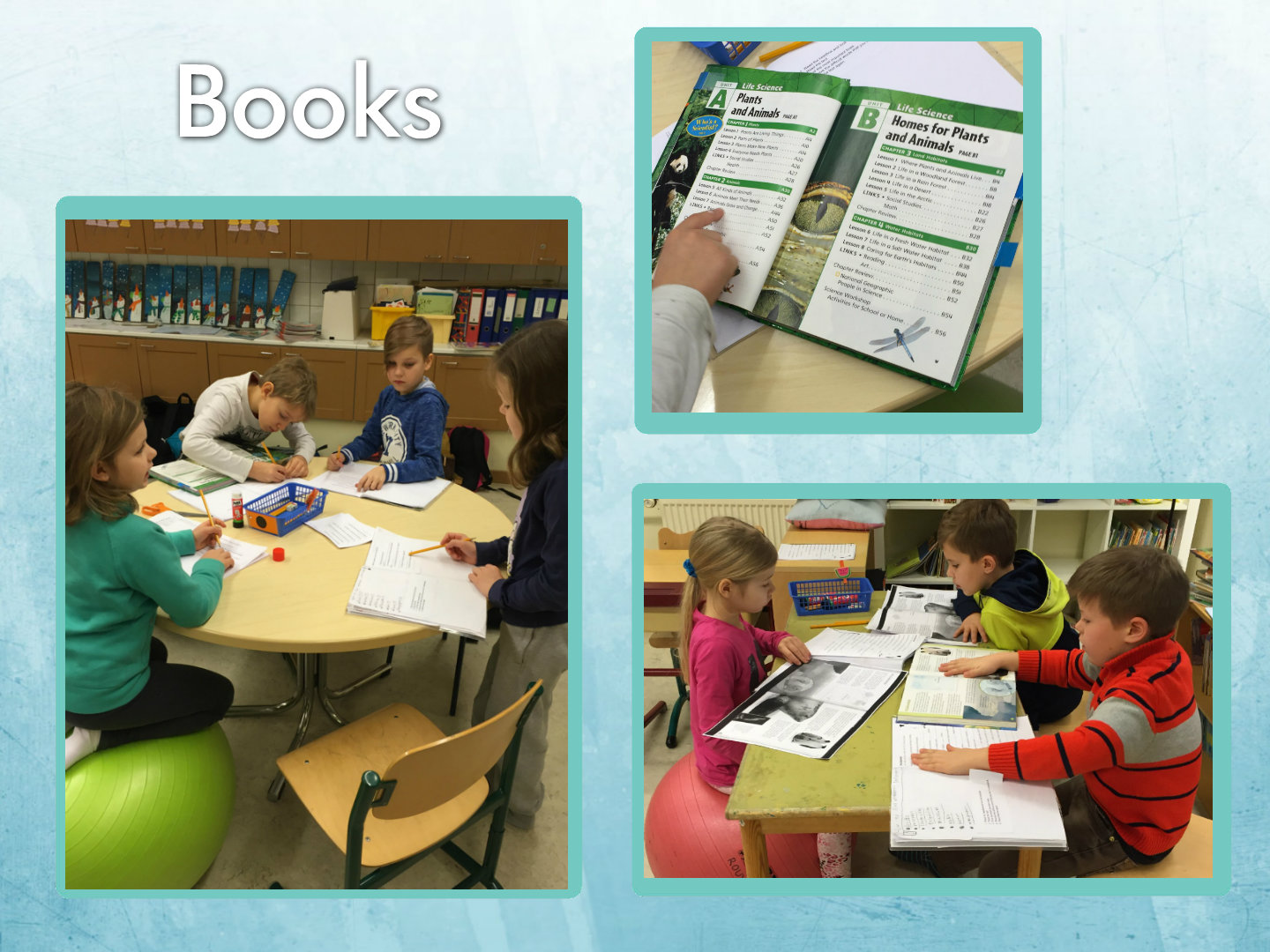 Relevant Information And Critical Thinking In Second Grade
