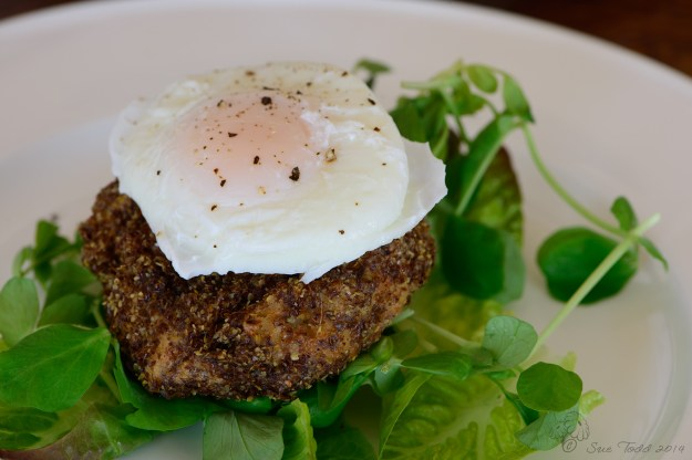 Kipper Fishcake served on a bed of green leaves with a poached egg. © Sue Todd 2014