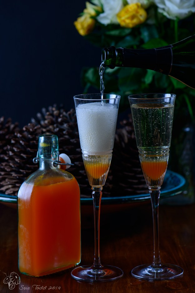 Rose Hip Syrup and Champagne Cocktail. © Sue Todd 2014.