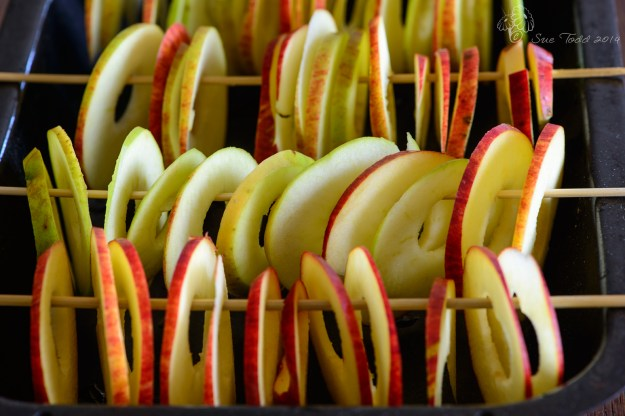Apples prepared and ready to dry in the AGA. © Sue Todd 2014