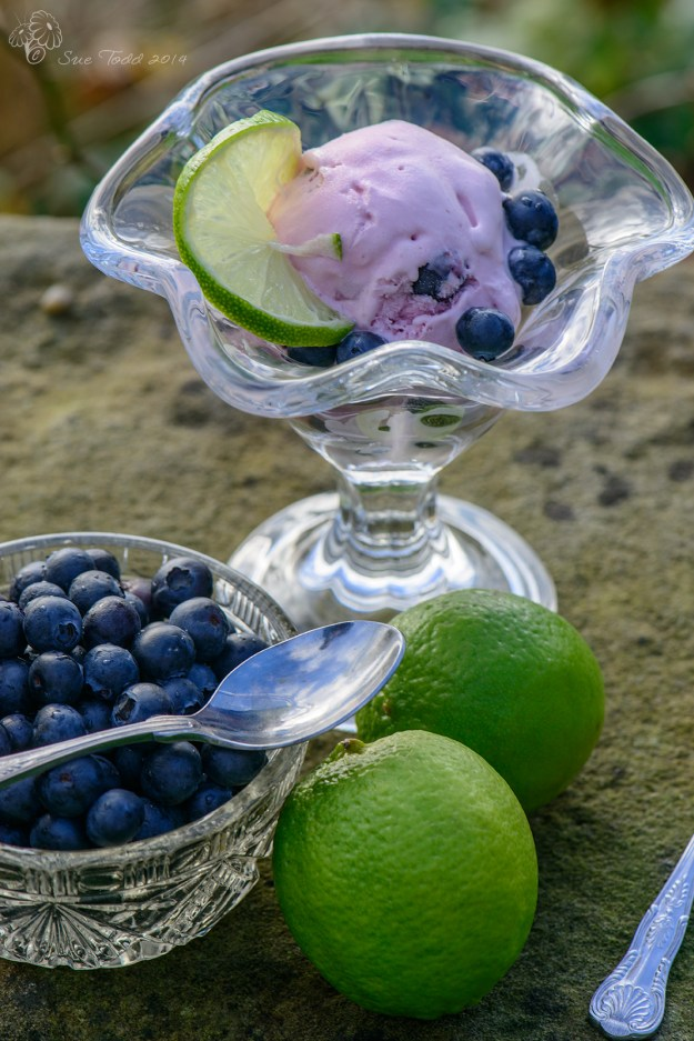 Blueberry, Lime and Coconut  Ice-cream. © Sue Todd 2014.