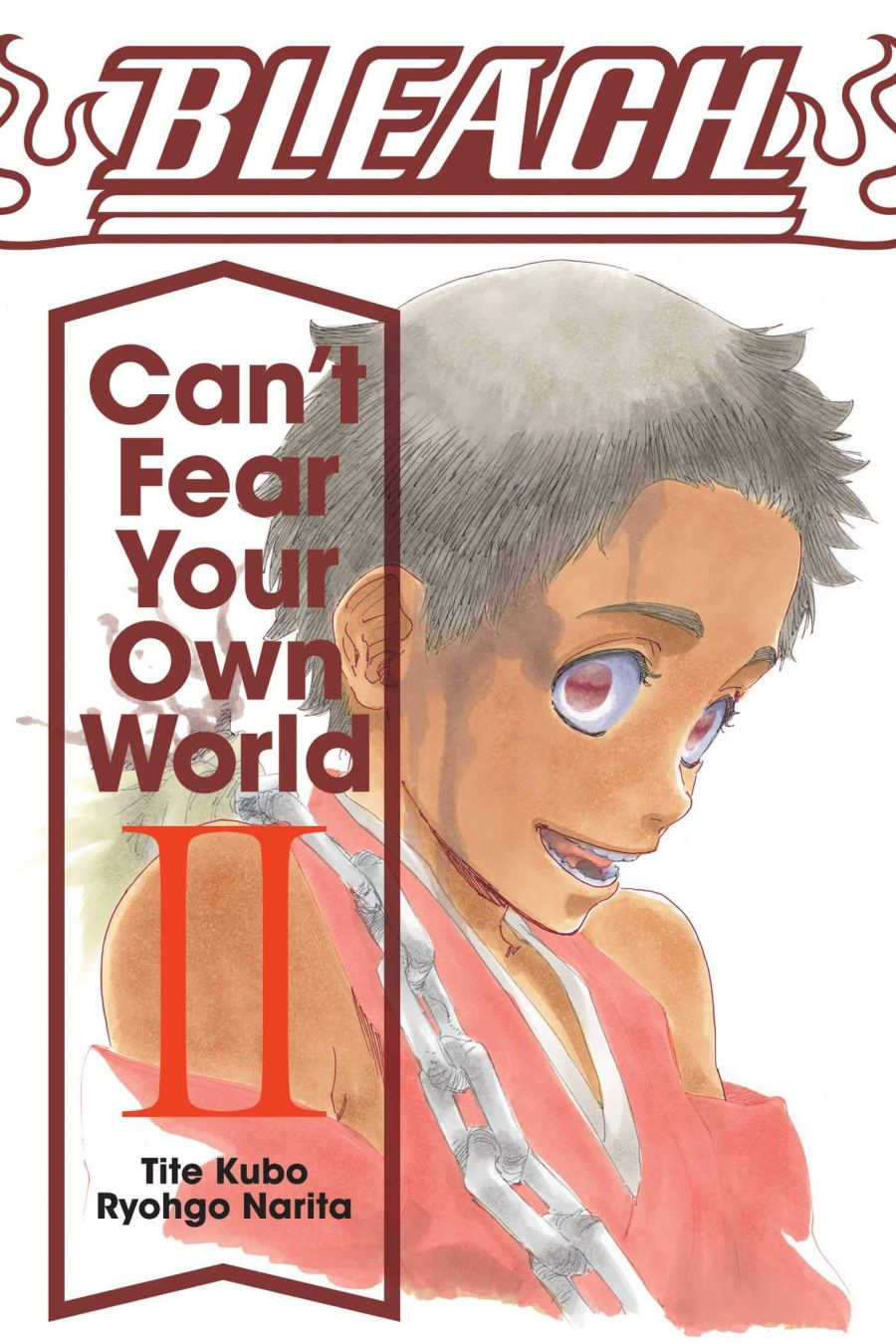 Bleach: Can't Fear Your Own World Volume 2 Cover