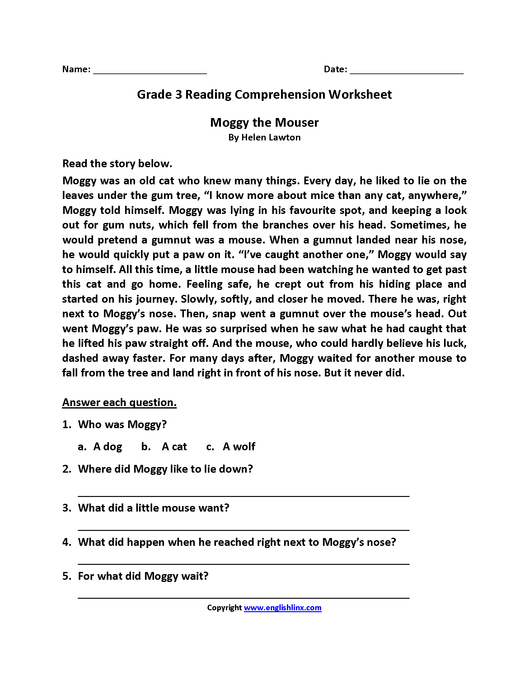 3 Grade Reading Worksheets Answer Sheet