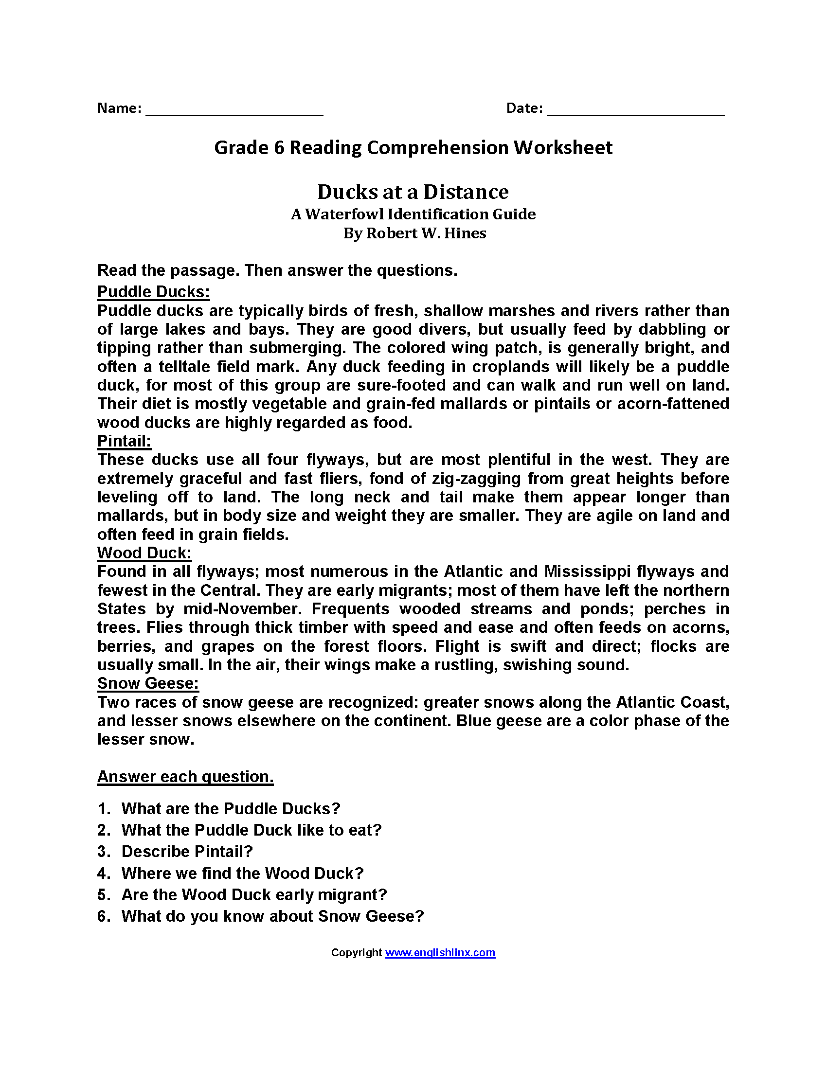 6th Grade Reading Comprehension Worksheet