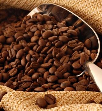 palabras en ingles acento (como cafe)