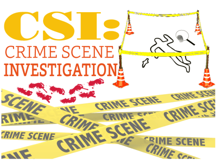 CSI Classroom Activity
