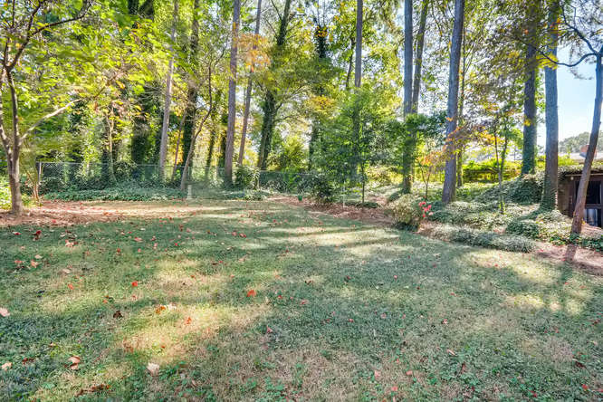2518 Hazelwood Dr NE Atlanta-small-042-35-Back Yard-666x445-72dpi