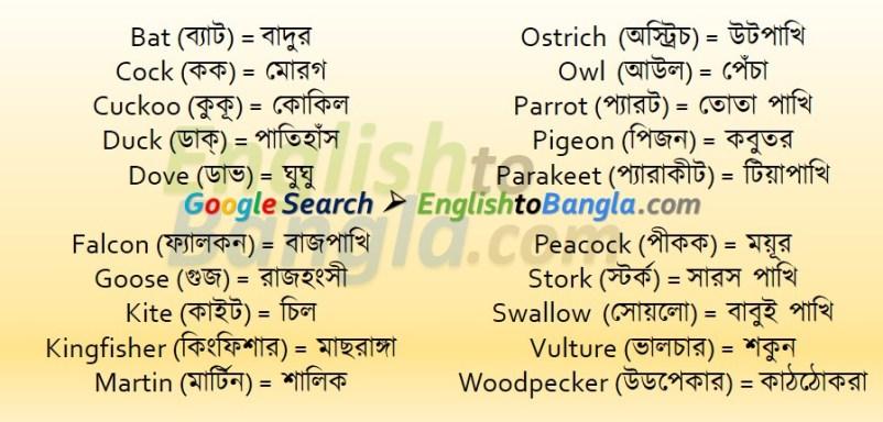 Commonly used wordsBird