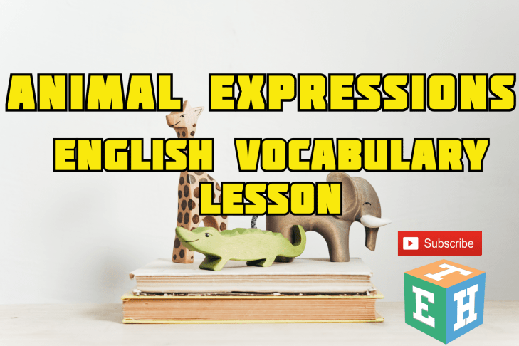 Animal Expressions -English vocabulary lesson