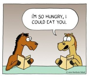 Blog_could_eat_a_horse_