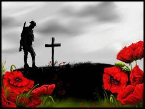 Why Do We Celebrate Poppy Day?