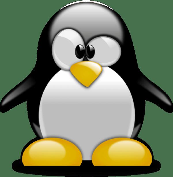 Объркан пингвин