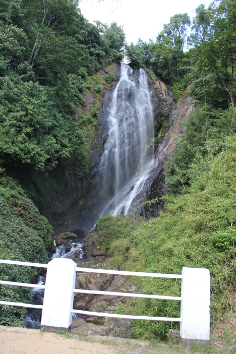 Waterfall Dalhousie