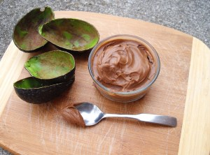 avocado chocolate mousee