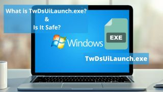 TwDsUiLaunch.exe