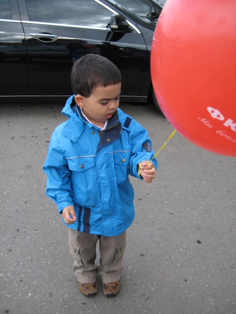They pop. They fly away. They never stay.