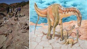 Vědci objevili nový dinosauří druh: Uprostřed rozsáhlé pravěké pouště