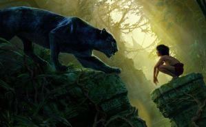 Opravdový Tarzan? Chlapce v Jižní Africe údajně vychovaly opice!