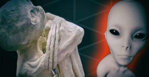 VIDEO: Byl zachycen skutečný humanoid?