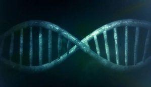 Lidská chiméra: Transplantace mu změnila DNA