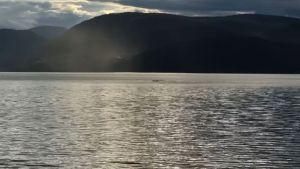 VIDEO: Nahrávka má zachycovat jezerní monstrum z Kanady